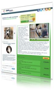 snapshot pagina di raccola fondi su buonacausa.org